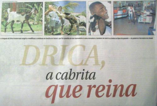 Em plena quinta-feira, uma cabrita vira contracapa do caderno de cidades: a fórmula contra o hardnews do Correio Braziliense
