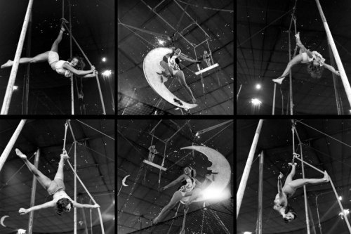 circo_life1